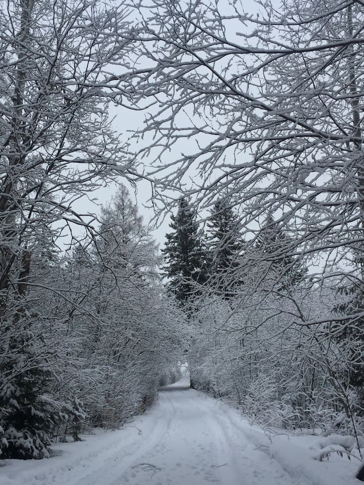 The private driveway in winter.