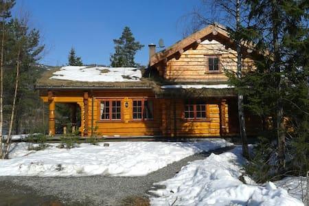 Schitterende villa in Vrådal - Vråliosen