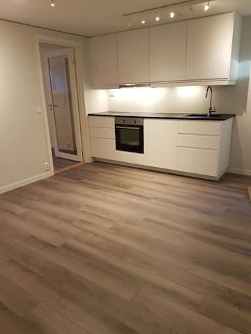 New appartment close to Oslo - Stabekk - Pis