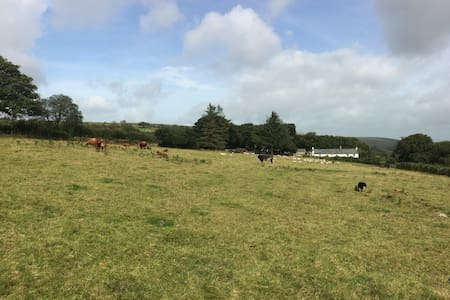South Creaber Stables, Dartmoor National Park