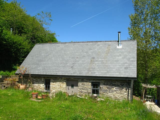 The Little Barn - Coed-y-bryn - Huis