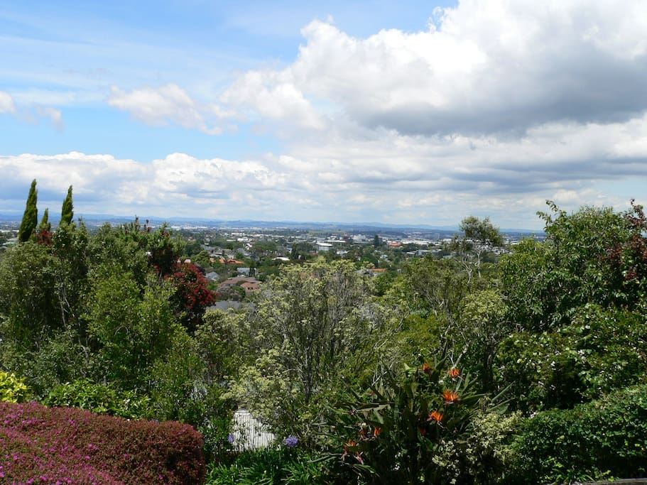 View from the Mount Hobson Apartment