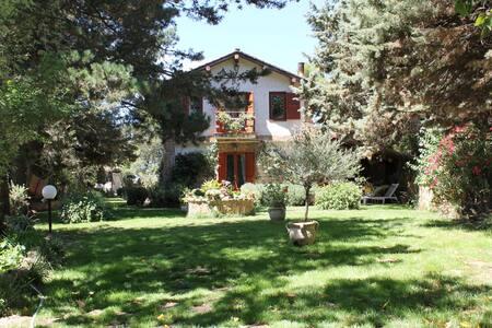 Casa sagona