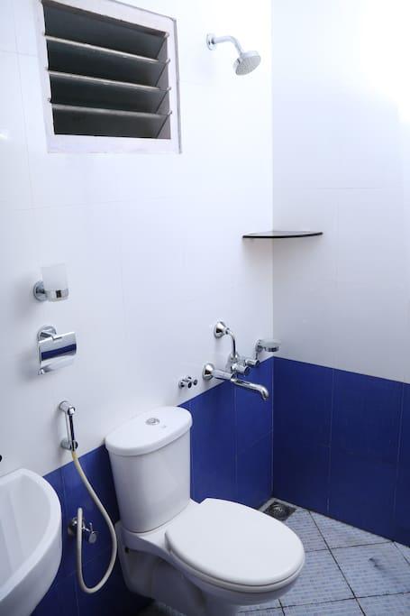 En suite bathroom (Attached to the bedroom)