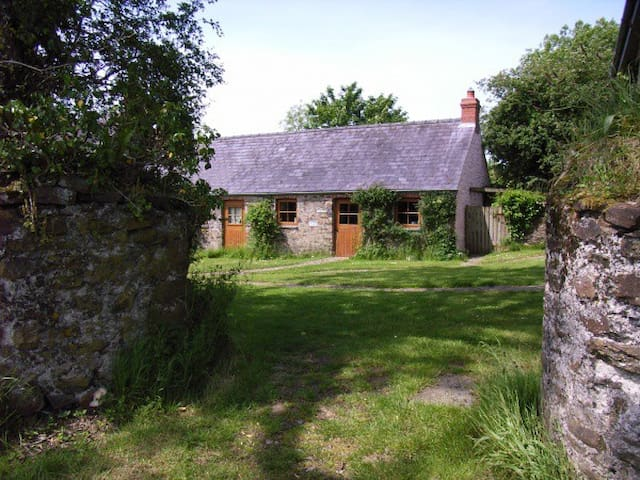 Long Barn, Little Loveston - Kilgetty - House