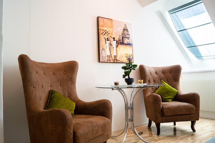Modern Apartment in the Heart of Vienna (9)