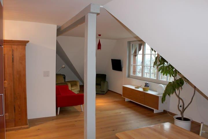 exklusive Wohnung mit Garten - Schaffhausen - Apartamento