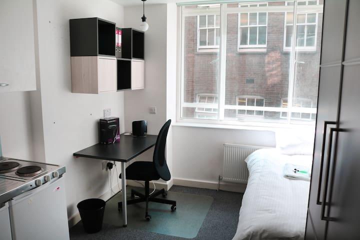 Studio Flat Farringdon Clerkenwell Holborn (11) - Lontoo - Huoneisto