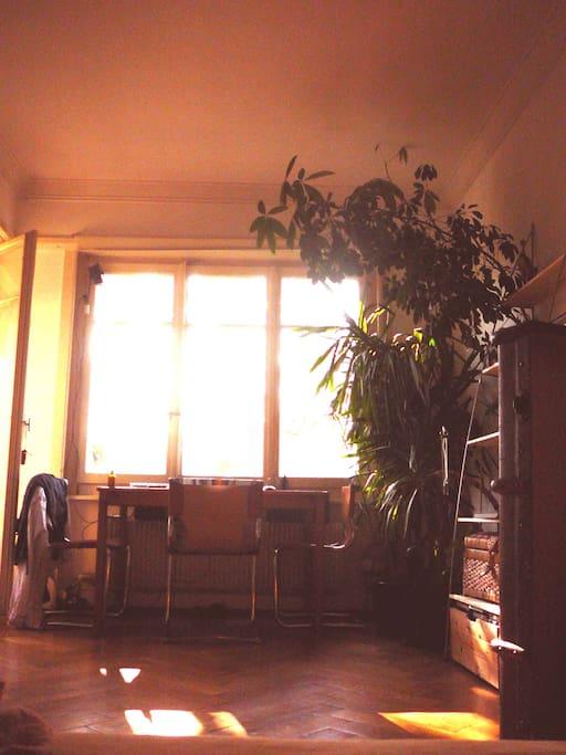 les fenêtres donnent en plein est, et sont très lumineuses toute la journée