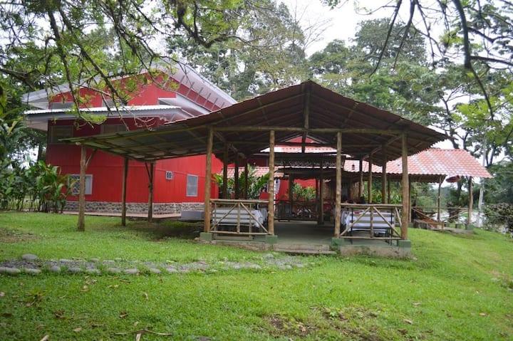 Islas del Río Sarapiqui Hostal