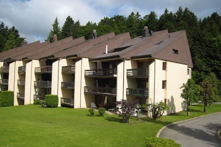 Cosy mountain-top studio - Saint-Cergue - Apartemen