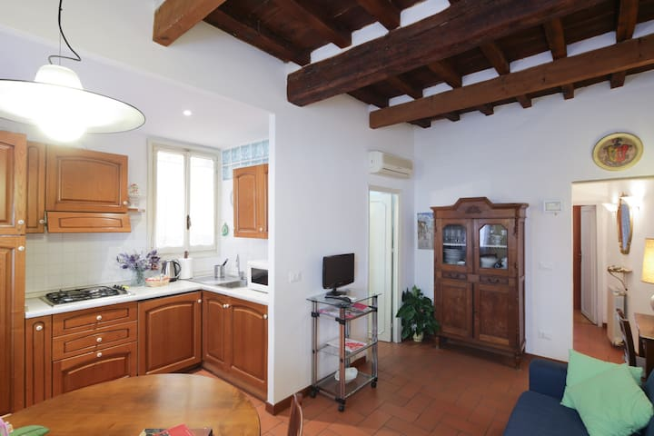 Lovely apartment in the heart of the historic center