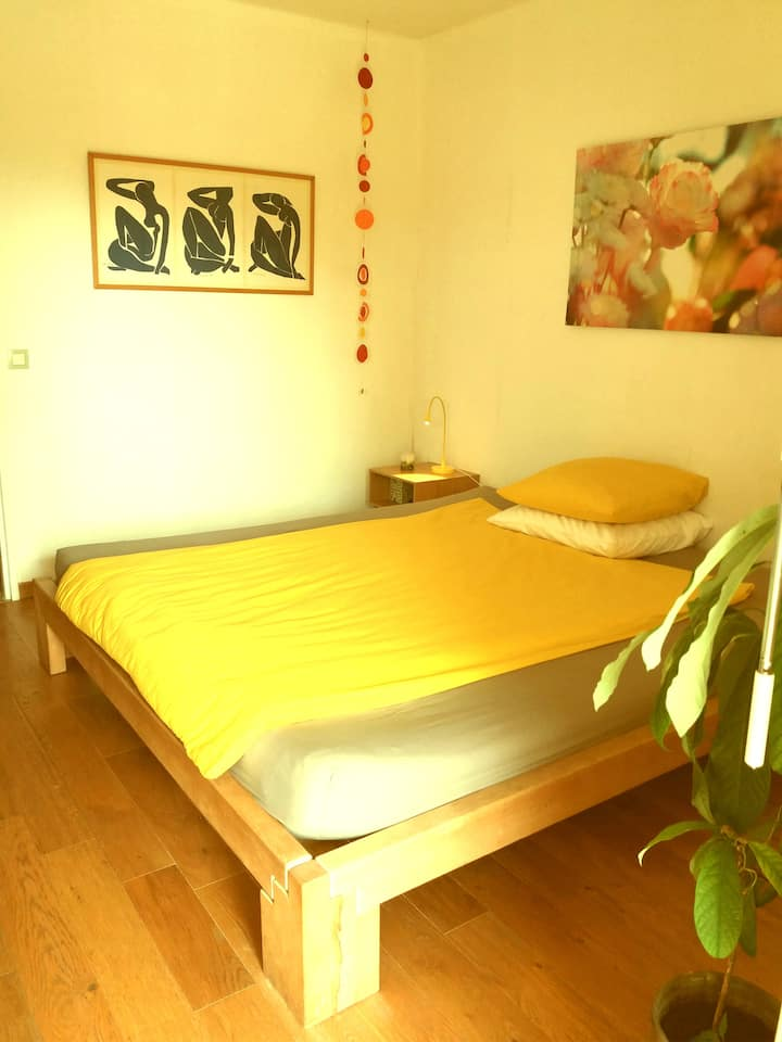 Calm room in residence with pool
