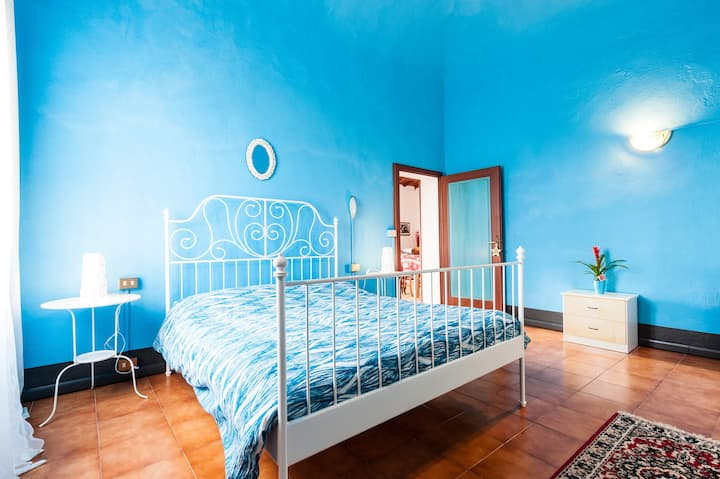Villa Frida...relax in a few minutes from Pisa!