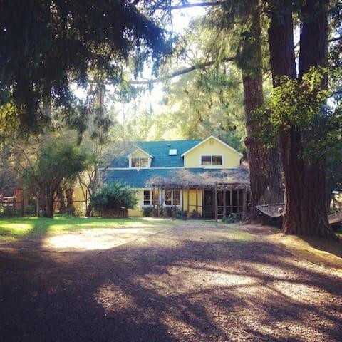 Knockanure Cabin