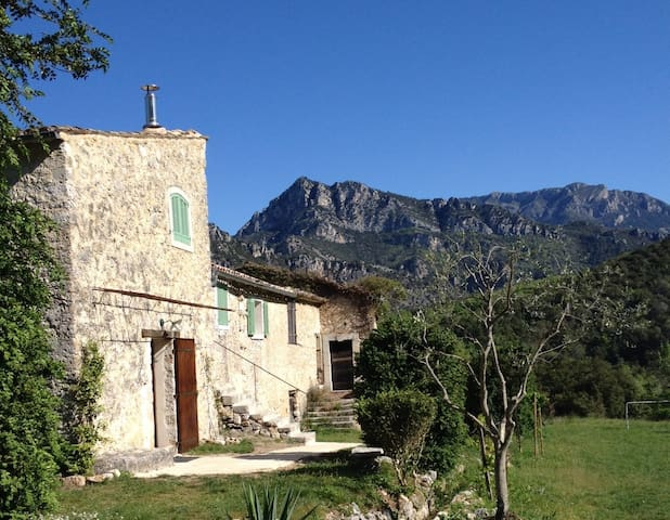 A renovated country farm near Nice - Le Broc - House