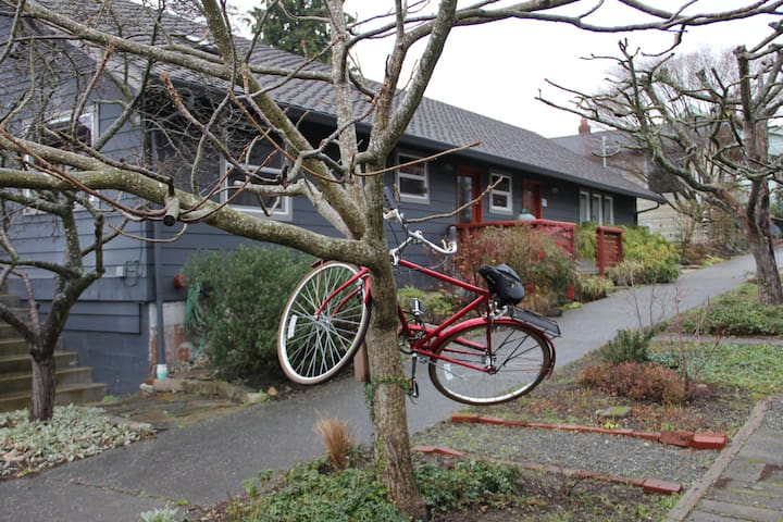 Treed bicycle landmark