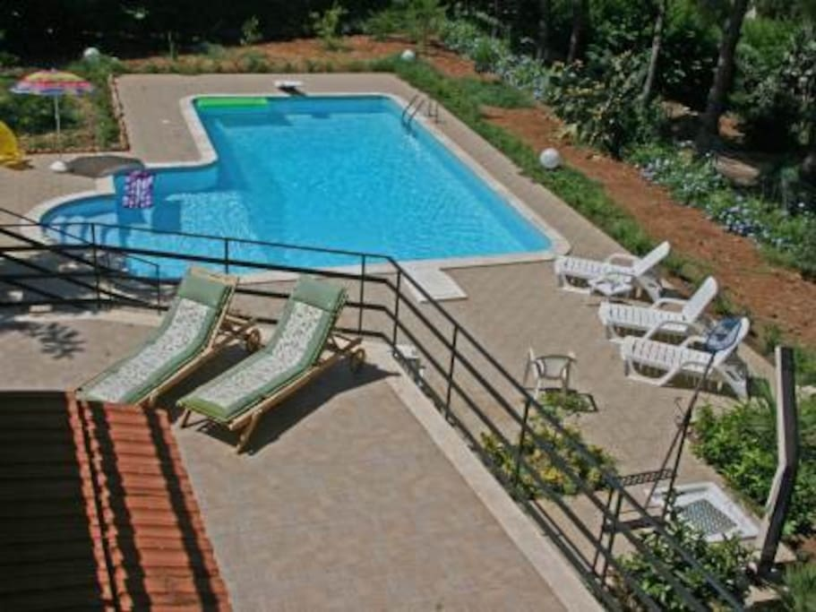 View of pool from terrace.