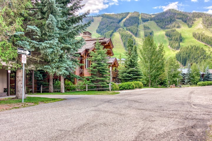 Ski-in/ski-out condo w/ shared hot tub - one dog is welcome, too!