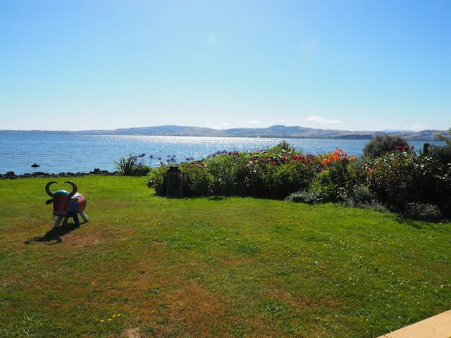 Absolute Lakefront Stay Queen Room - Rotorua - Bed & Breakfast