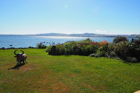 Absolute Lakefront Stay Queen Room - Rotorua - Penzion (B&B)