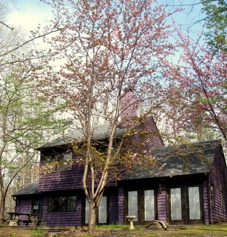 Woodsy setting on 3+ acres -serene! - Barboursville - House