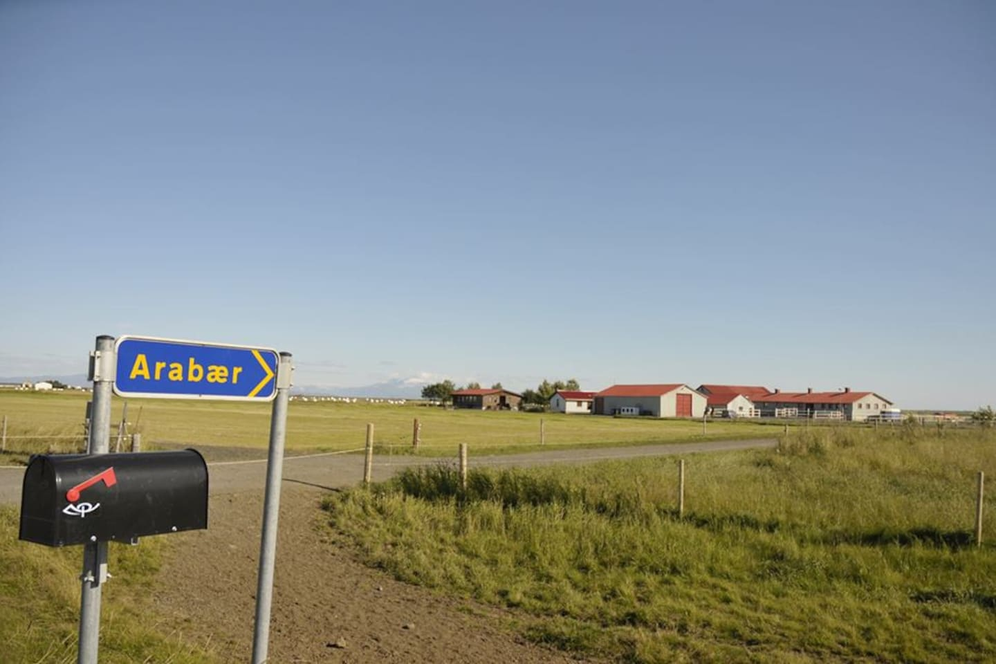 Arabaer Farm from the road - photo - Vera van Praag Sigaar