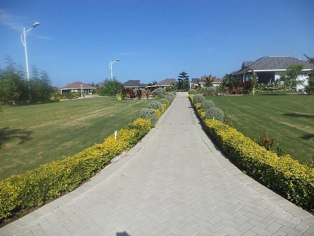 Walk path to Paradise