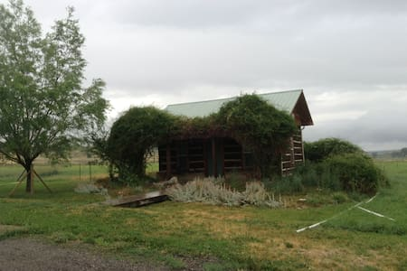 Cozy Cabin in Duckett Draw - Montrose - Cabana