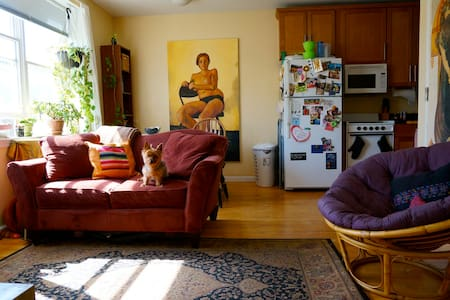 1bd in a sunny 2 bd Ft. Greene Apt - Apartment