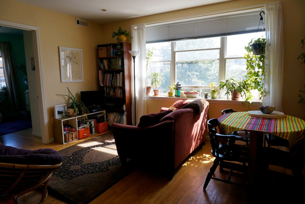 sunny, plant filled living and dining area