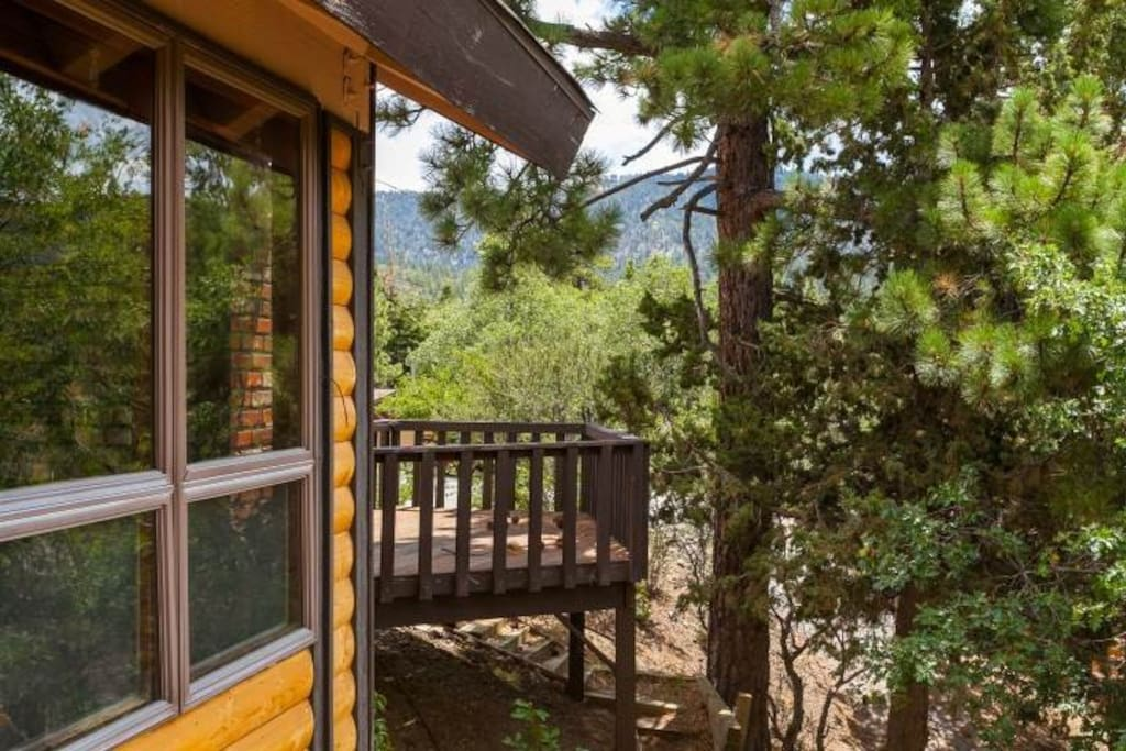 Cozy Cabin W Bear Mountain View Cottages For Rent In
