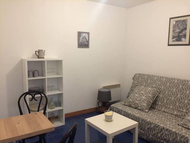 Studio T1  centre ville avec cour, calme