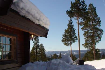 Cabin in Björnrike / Vemdalen