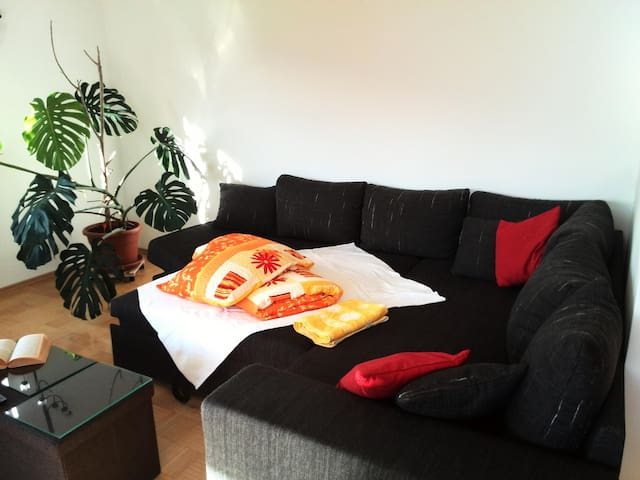 Big and Bright room near Airport! - Innsbruck - House