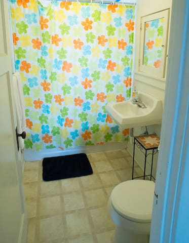 The bathroom is decorated cheerfully. There are plenty of plush bath towels, hand towels and wash cloths. If you've forgotten any toiletries, we have extras in the closet.