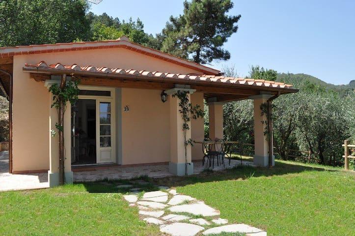 New 2 bed villa with large pool - Quarrata - Kabin