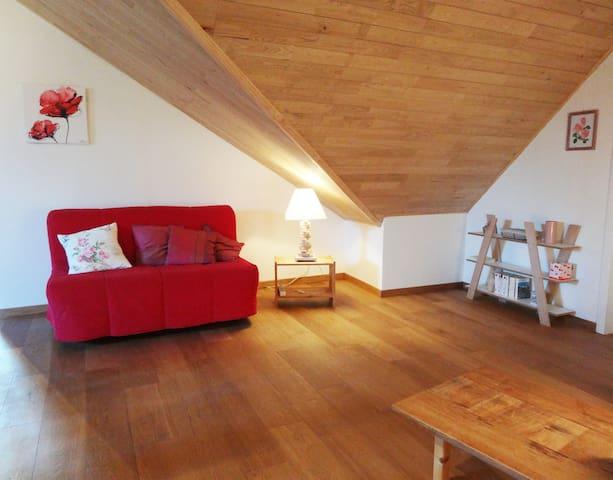Le salon avec un canapé lit (140)