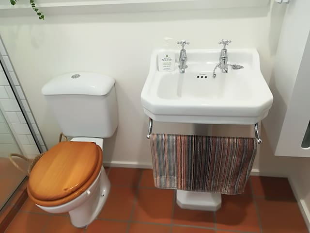 Private toilet and basin