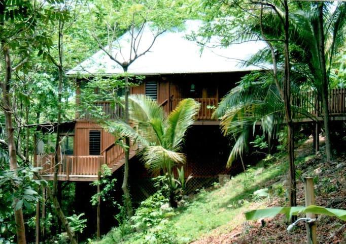 Tropical Bungalows Close to Beaches - Rincón - Cabin