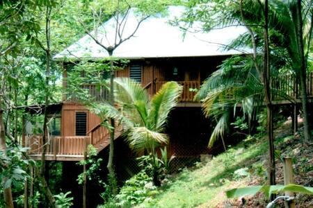 Tropical bungalows,close to beaches - Rincón