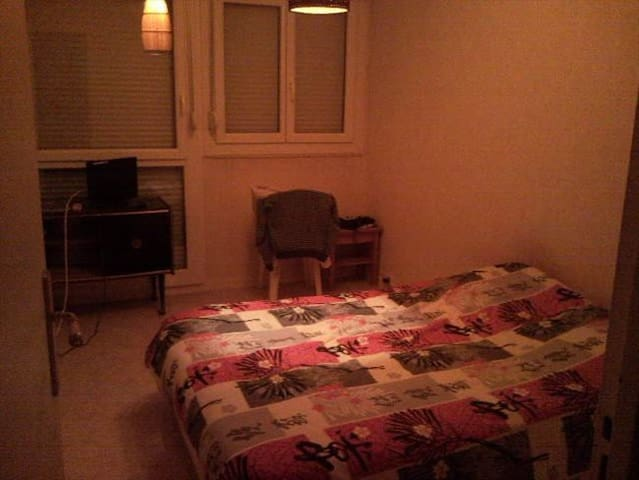 appartement agréable avec locataire sympa - Longvic - อพาร์ทเมนท์