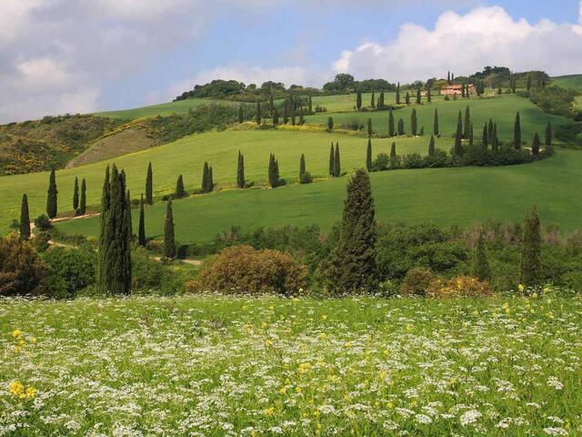 Verde ritrovo fra le colline toscane