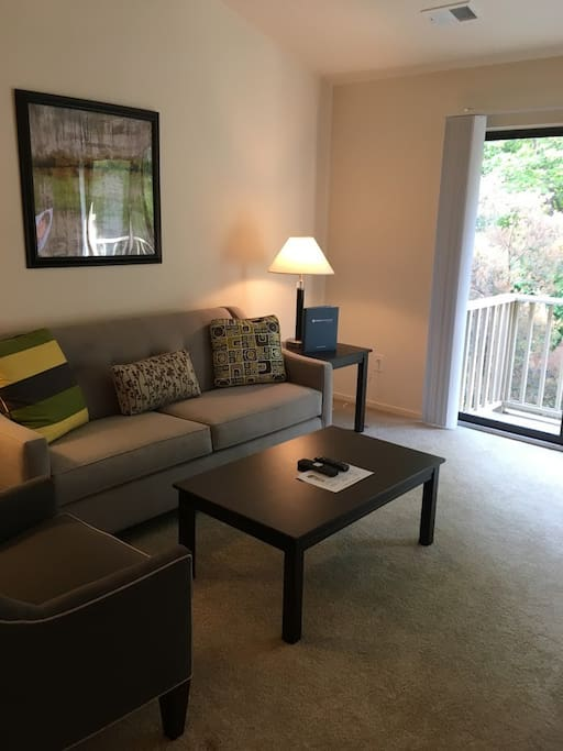 Private 1bed 1bath metro detroit beautiful area apartments for rent in northville michigan 2 bedroom apartments in downtown detroit