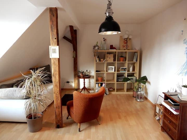 Helle 2-Zimmerwohnung im Herzen Rostocks