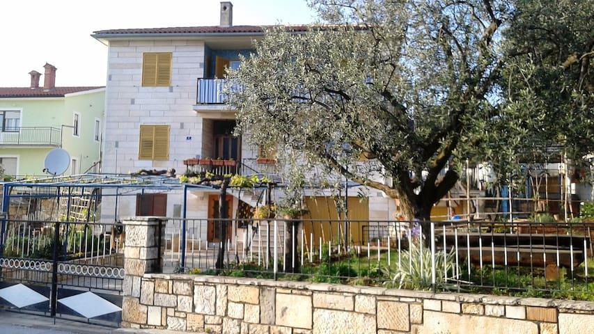 Apartment Avelina