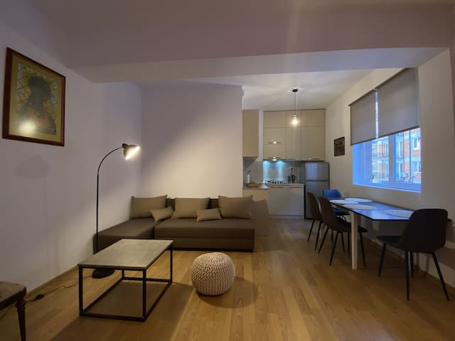 Freshly renovated 2-Room-Apartment in Tbilisi