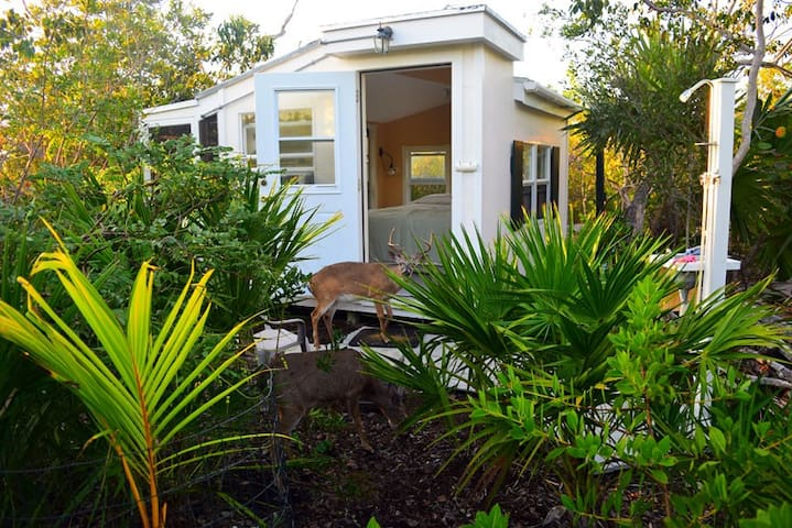 Island Cabin in Key Deer Refuge - Big Pine Key - Cabana