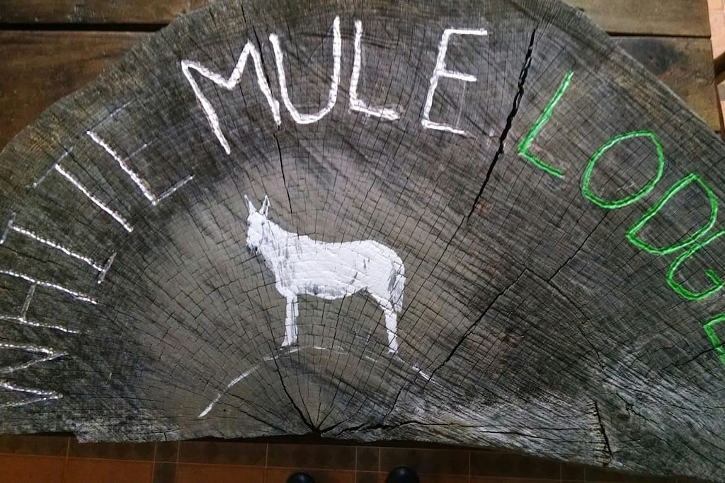 Welcome to the White Mule Lodge! We look forward to showing you our Tennessee hospitality!