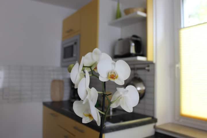 Weber Apartments - Pillnitz
